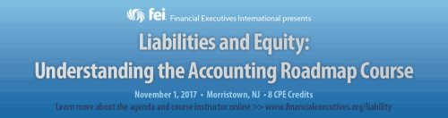 FEI-Liability-and-Equity-Course-horizontal-banner.jpg